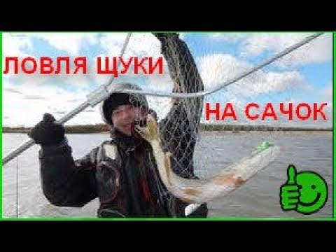 РЫБАЛКА НА ЩУКУ САЧКОМ ЛОВЛЯ ЩУКИ НА САЧОК В Астрахани