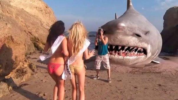 Подборка самых новых фильмов про морских чудовищ!