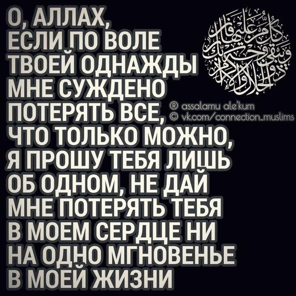 Фото №438583710 со страницы Аиды Салеевой