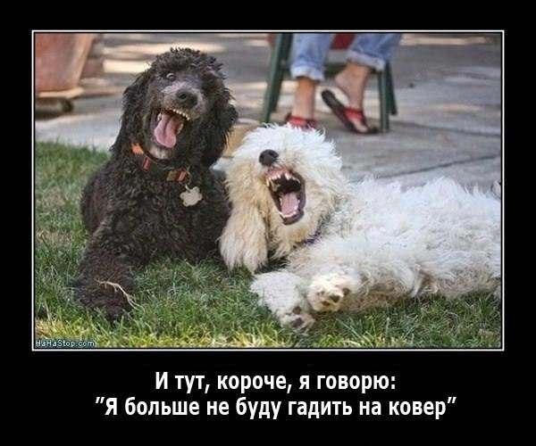 Всяко - разно 40 )))