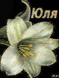 Юлінька Кошинська, 8 января 1977, Малин, id204072378