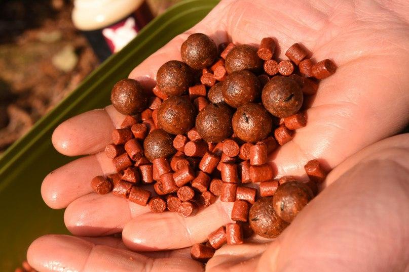 В состав бойлов входят натуральные ингредиенты, Робин Ред, мясо тунца, моллюски и овощи