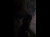 Хетман Мангол - Live