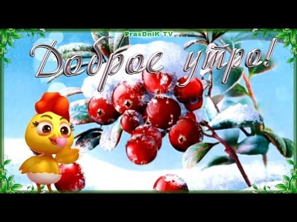 Зимнее пожелание с добрым утром! Доброе утро и отличного настроения!