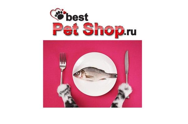 В интернет магазине для животных бест
