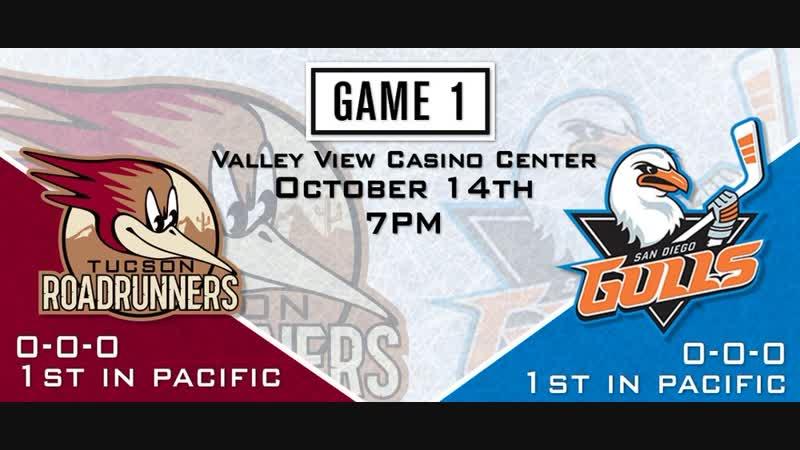 AHL Roadrunners vs Gulls