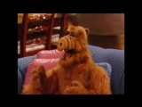 Alf Quote Season 1  Episode 24 Жизнь