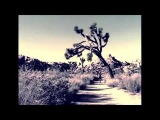 Crippled Black Phoenix and Cypress Grove (feat. Mark Lanegan & Bertrand Cantat) - Constant Limbo (Constant Rain)