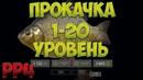 Русская Рыбалка 4 Прокачка с 1 по 20 уровень доночник