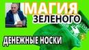 ⚜ Тайна ЗЕЛЕНОГО цвета 💰 Зеленые НОСКИ и ДЕНЬГИ 💰 Убираем несчастья и бедность Эзотерика