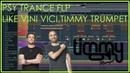 PSY TRANCE Style of Vini Vici Timmy Trumpet FLP Download