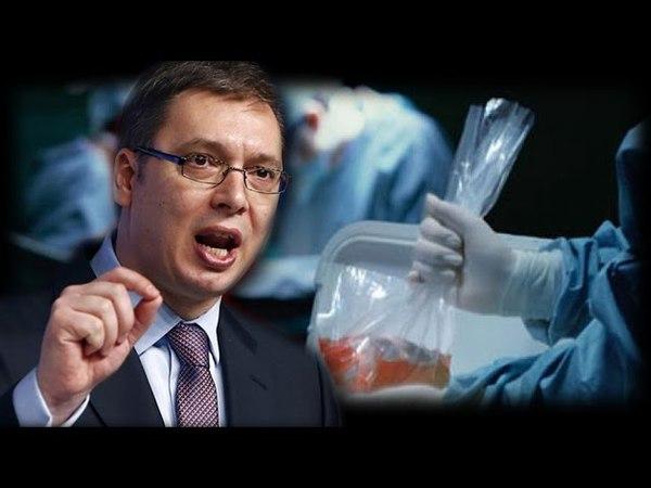 Jeziva istina o Aleksandru Vučiću i političkoj mafiji koja je uništila Srbiju!