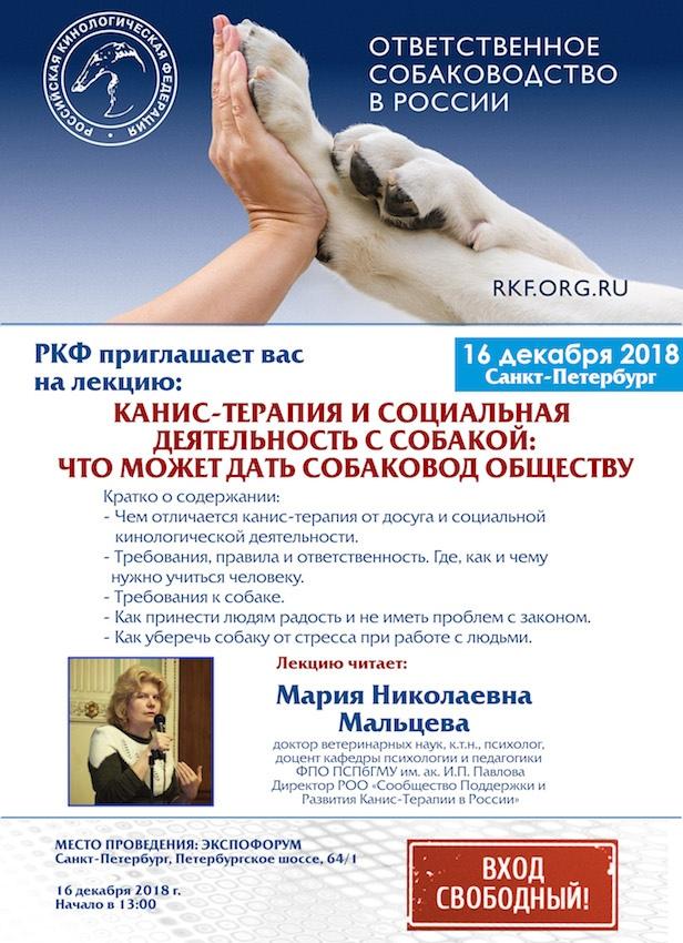 Канис-терапия исоциальная деятельность ссобакой: что может дать собаковод обществу