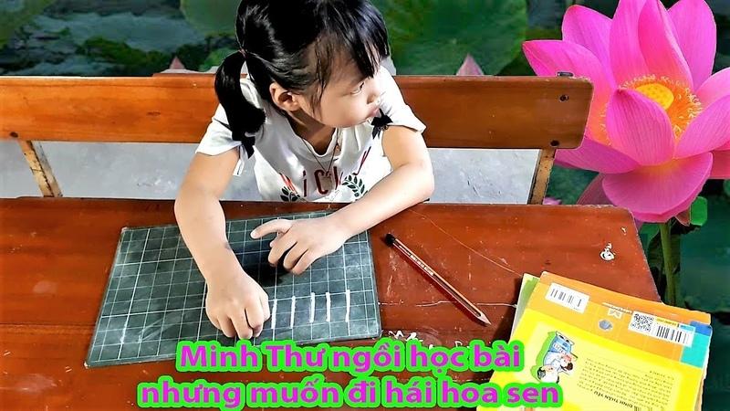 Minh Thư tập viết nét sổ thẳng và trong lòng muốn đi hái hoa sen