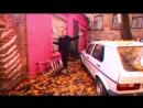 CASisDEAD - Pat Earring | Choreo by Kalinin Artem