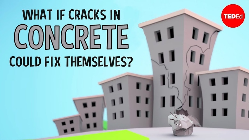 What if cracks in concrete could fix themselves? - Congrui Jin