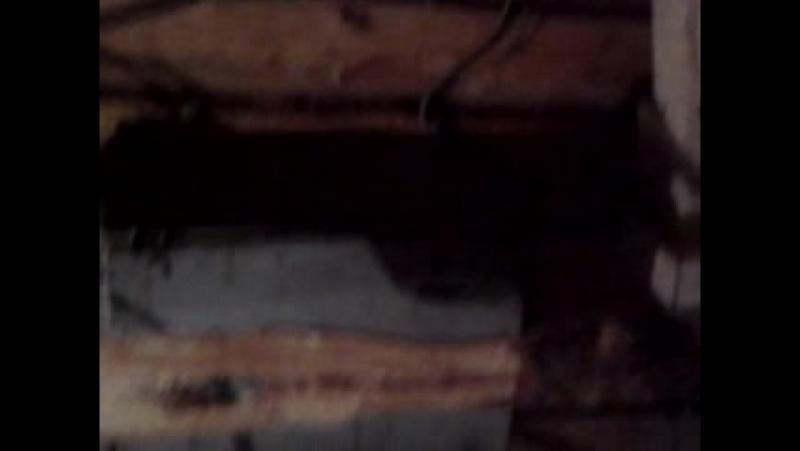 Video-2013-09-06-02-03-40.mp4