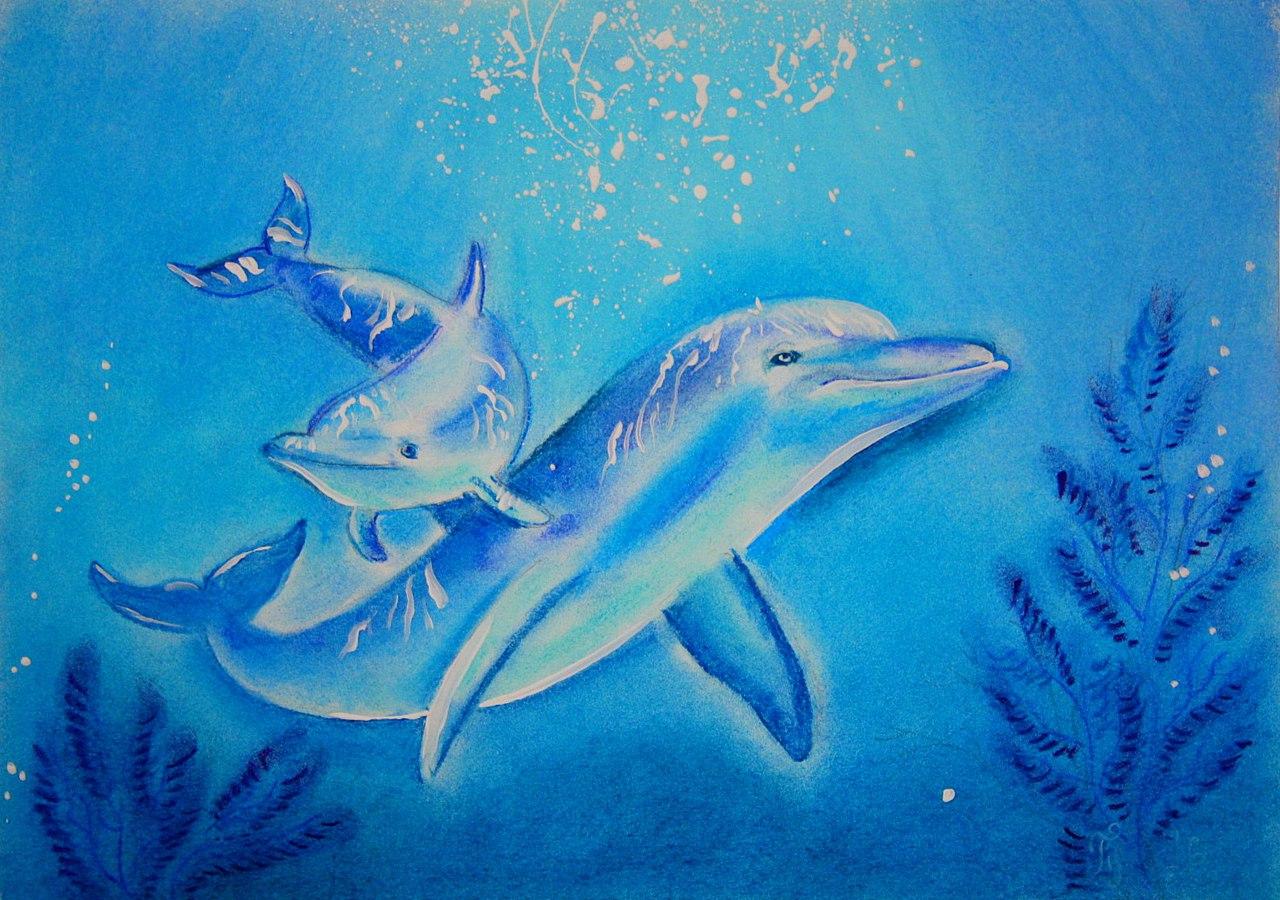 Афиша Новосибирск 17.02 Прикосновение к дельфину