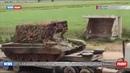 САА разместила дополнительные войска на северо-западе Хамы