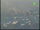 Челябинск назвали самым грязным городом на Урале
