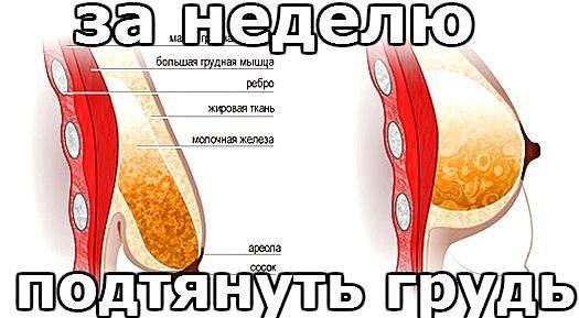 беременность аватарки: