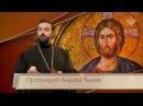Евангелие дня Относиться к слову нужно как к хлебу воде и рукопожатию
