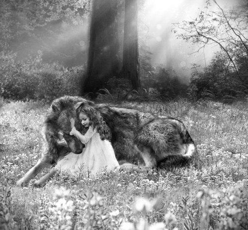 Вовк і дівчинка