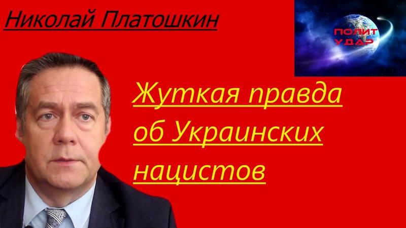 Николай Платошкин - Жуткая правда о Украинских нацистов