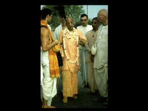 Prabhupada's Wisdom Series Cow Protection