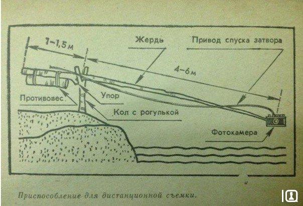 По делу 19955307 amp о посыпании на хуй комиссара ворошиловского райвоенкомата монсеньора рожкова