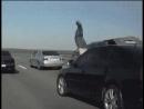 Чем кончились разборки на дороге