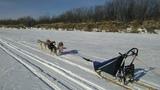 Start of sled