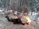 Лесорубы Новой Игирмы