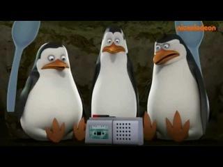 Najlepsza przeróbka ''Pingwiny z Madagaskaru