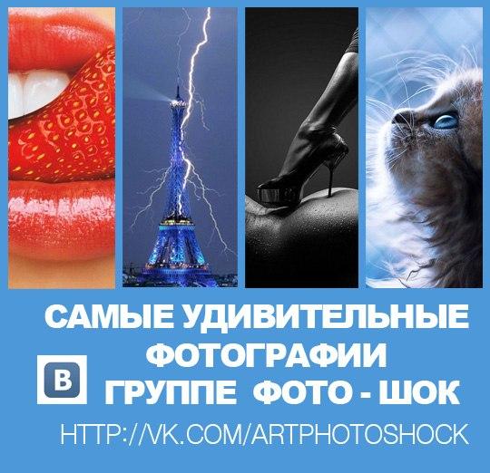 видео приколы смотреть бесплатно 2012: