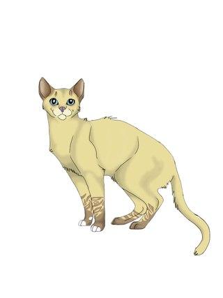 Коты Воители *Племя Лунного Заката.  Вступайте и приглашайте своих друзей ! мы всем рады.