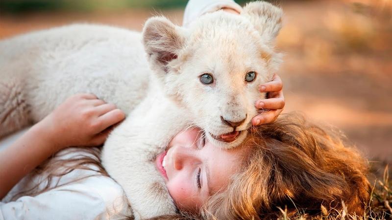 Девочка Миа и белый лев Русский трейлер 2018