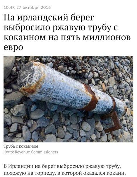 Фото №441942162 со страницы Арсения Камалидинова