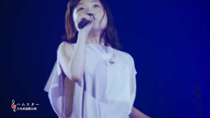 Ariyasu Momoka「Hamster」from「ココロノセンリツ ~feel a heartbeat~ Vol 1 5」