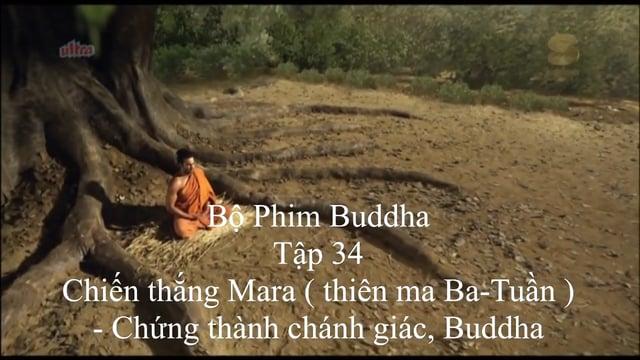 Phim Đức Phật tập 34/55