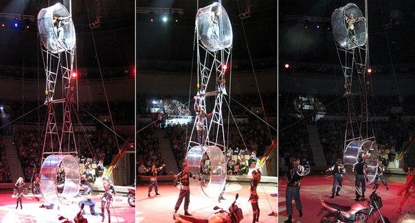 Гастроли европейского цирка «Звезды Монте–Карло» в Новокузнецке
