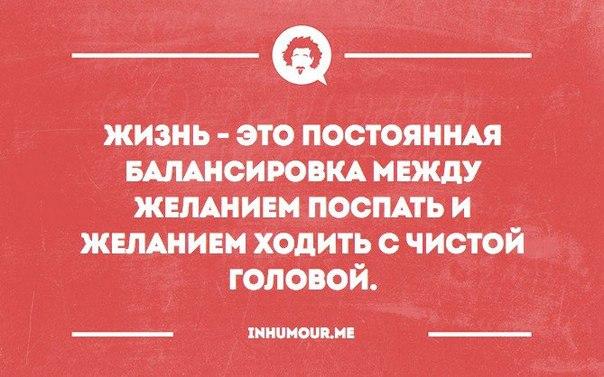 https://pp.vk.me/c543108/v543108554/1d7e3/JKU4DZ_h_-0.jpg
