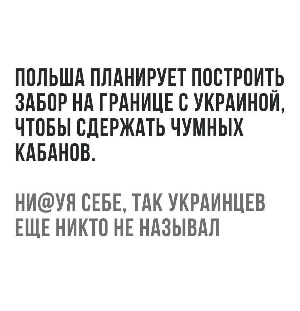 https://pp.userapi.com/c543105/v543105583/3e7fe/1ZTF3-dupTc.jpg