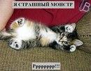Слава Андриевский фото #47