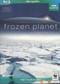 Смотреть Замёрзшая планета / Frozen Planet онлайн