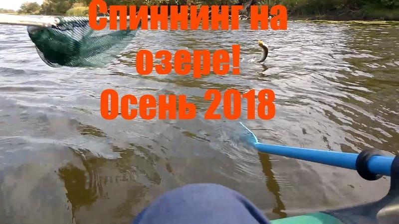 Спиннинг на озере в Подмосковье Осень 2018