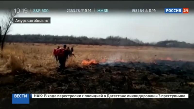 Новости на Россия 24 • На Дальнем Востоке бушуют природные пожары