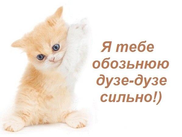 Красивые картинки и открытки vk com