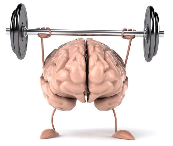 Тренировки для мозга