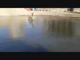Бульдозер с водителем ушел на дно карьера около строящегося аквапарка в Хабаровс
